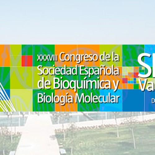 XXXVIII Congresos de la Sociedad Española de Bioquímica y Biología Molecular