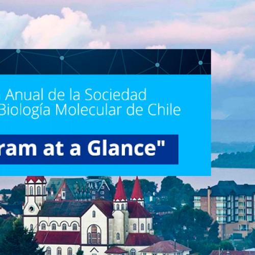 """""""Program at a Glance"""". XXXVIII Reunión Anual de la Sociedad de Bioquímica y BiologíaMolecular de Chile"""