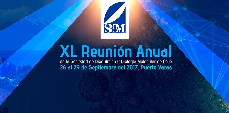 VER AFICHE de la XL Reunión Anual de la Sociedad de Bioquímica y Biología Molecular