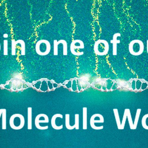 Coming up: Single-Molecule Workshops