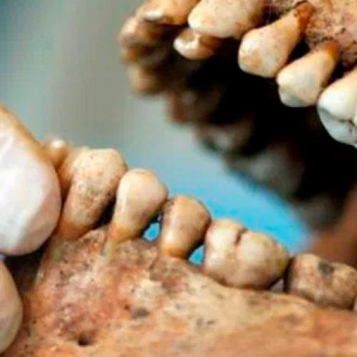 """Simposio """"Antropología Dental y Genética Antropológica: estado actual y perspectivas en modelos humanos y de otros mamíferos"""""""