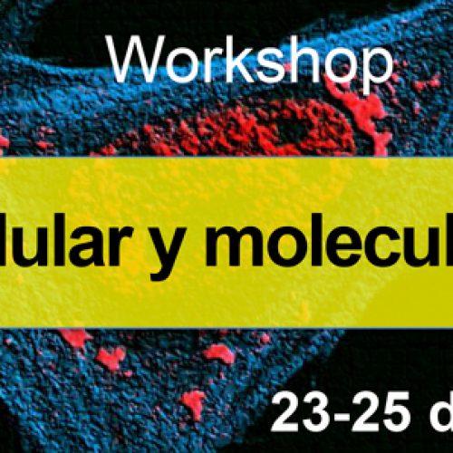Workshop: Biología celular y molecular del ARN