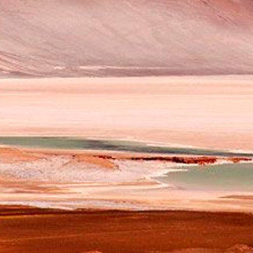 DESIERTO DE ATACAMA: En el lugar más seco del mundo también hay vida