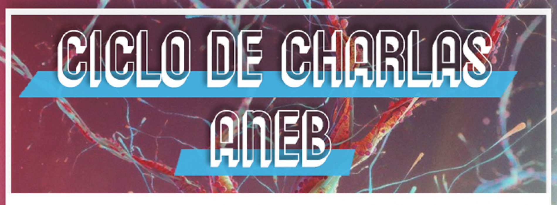 Ciclo de Charlas ANEB – Foro de difusión científica