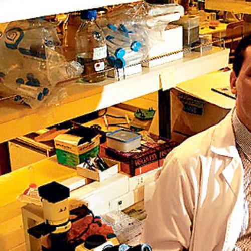 Investigador chileno es nombrado miembro del consejo científico de la ONU