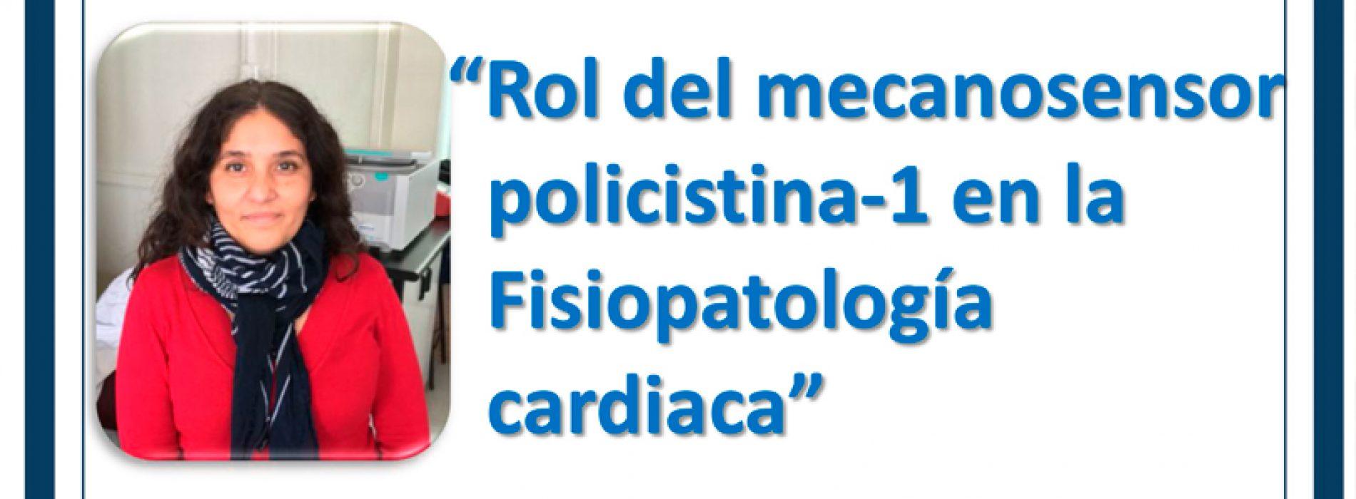 Seminario: Rol del mecanosensor policistina-1 en la Fisiopatología cardiaca