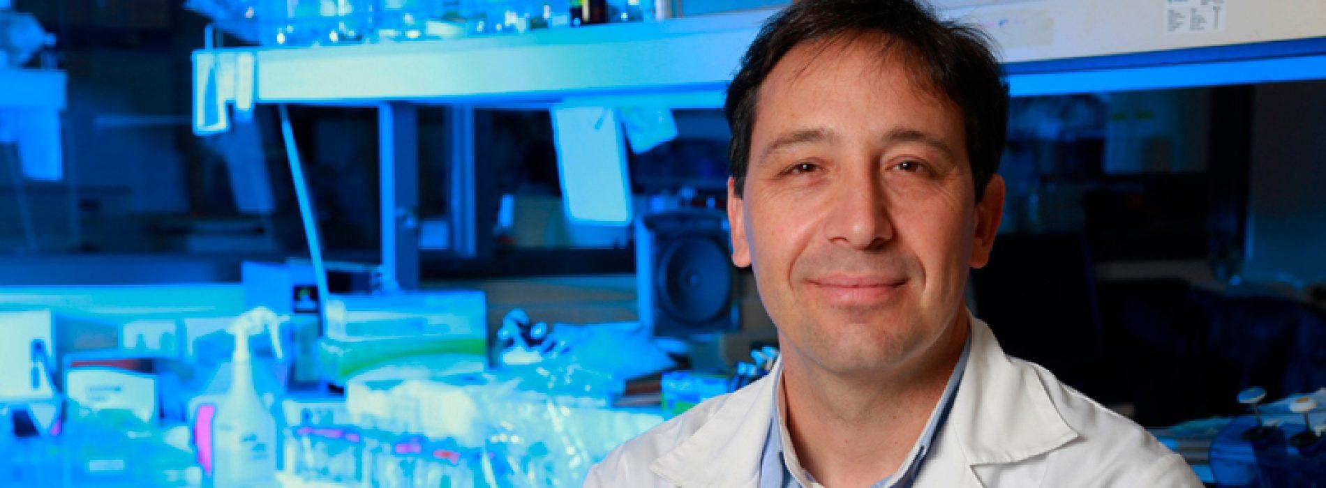 Harvard estudia vacuna chilena contra el virus sincicial