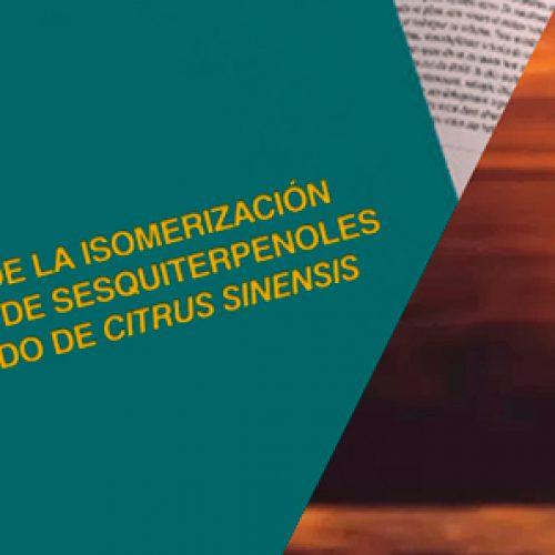 Tesis Luz María Perez 1985, revisar en historia