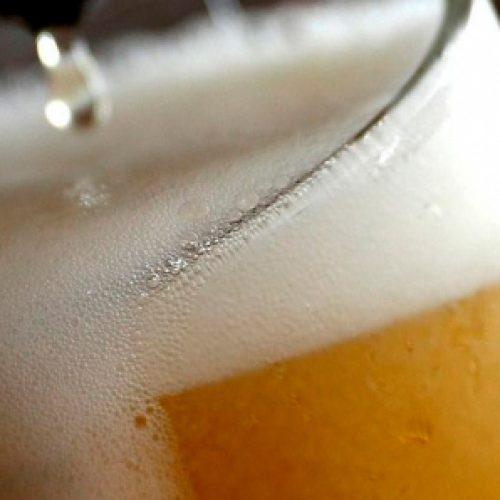 Investigación de la diversidad de levaduras de Chile busca desarrollar cerveza 100% nacional