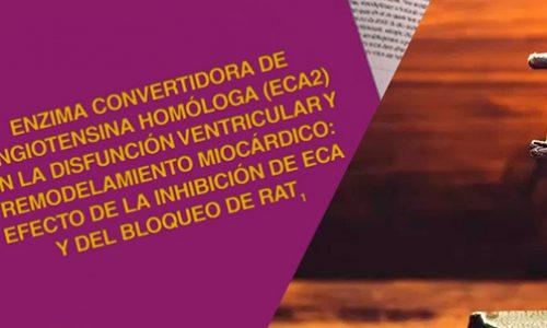 Tesis pregrado Manuel Varas 2006, revisar en historia
