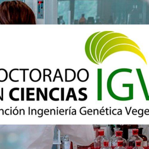 Seminar Dr. María Inés sweeping C. - Universidad de Concepción
