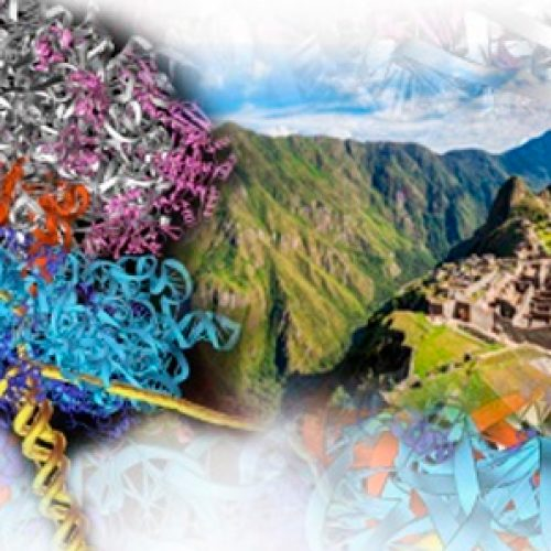 2019 course of the postgraduate course Latinoamericano of Biophysics