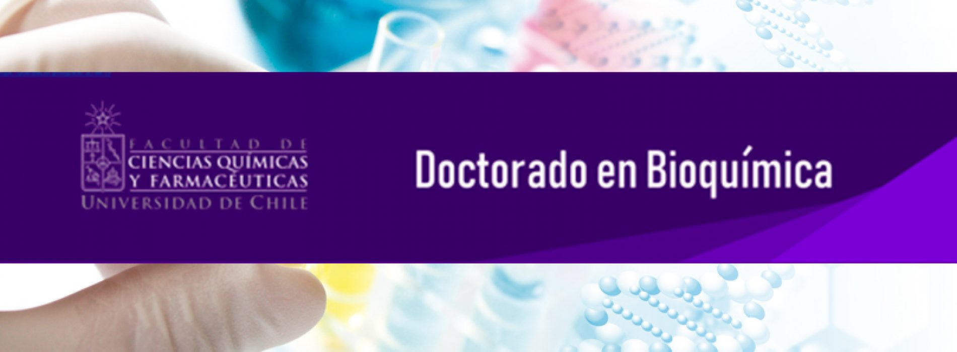 Doctorado en Bioquímica – Universidad de Chile