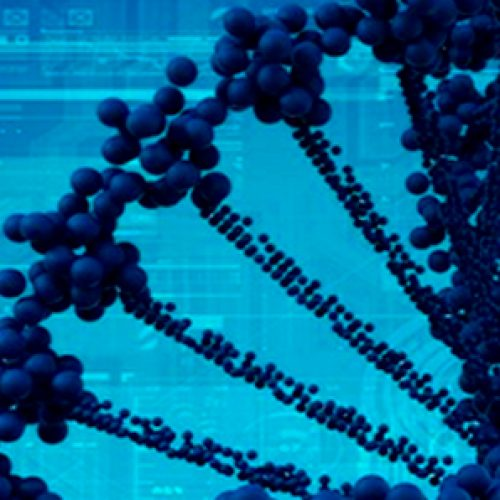 Bioinformatics Course 2019