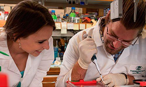 Graduate Program – Ph.D. in Biology