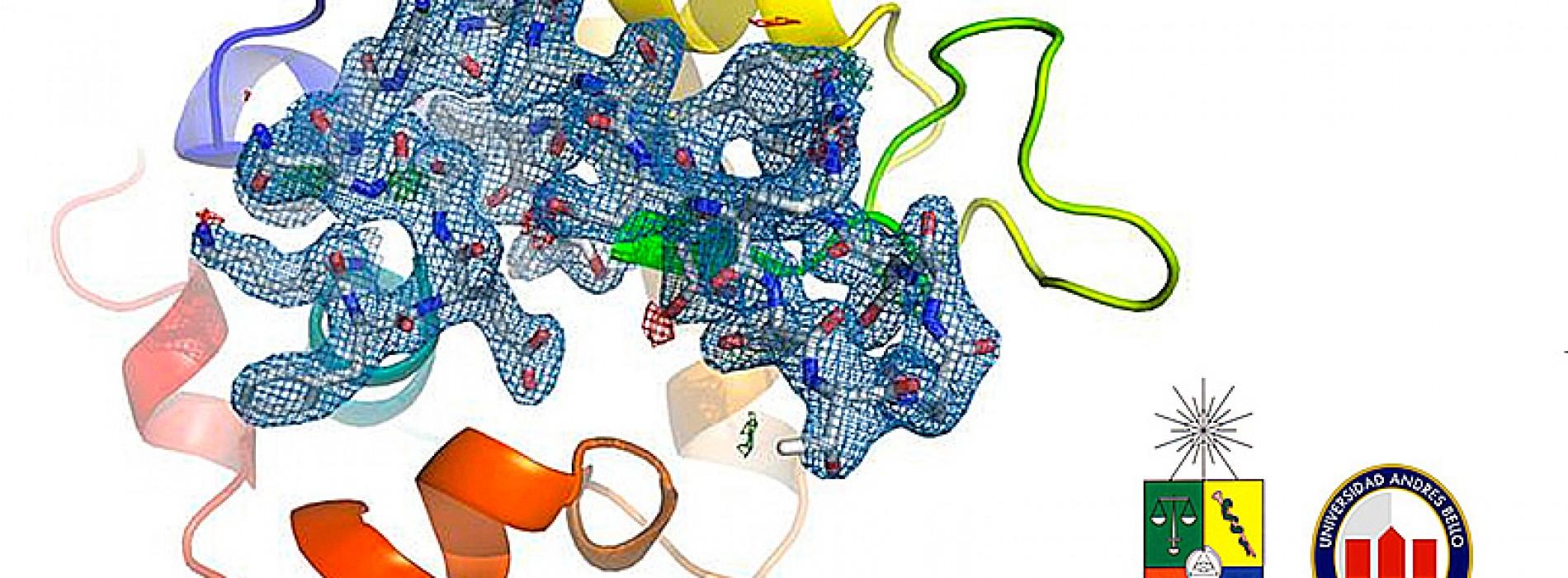 2do Workshop de Cristalización y Cristalografía de Proteínas