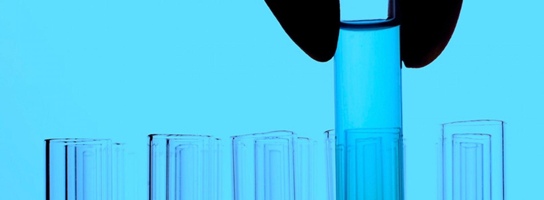 CSK-TEAM Taller de Bioemprendimiento