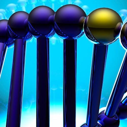 "CERELA CONICET Bioinformatics Training Course ""BIOINFORMATICS AND OMICS IN THE NEXT‐GEN SEQUENCING ERA """