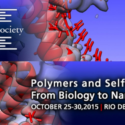 Polymers and Self-Assembly: From Biology to Nanomaterials