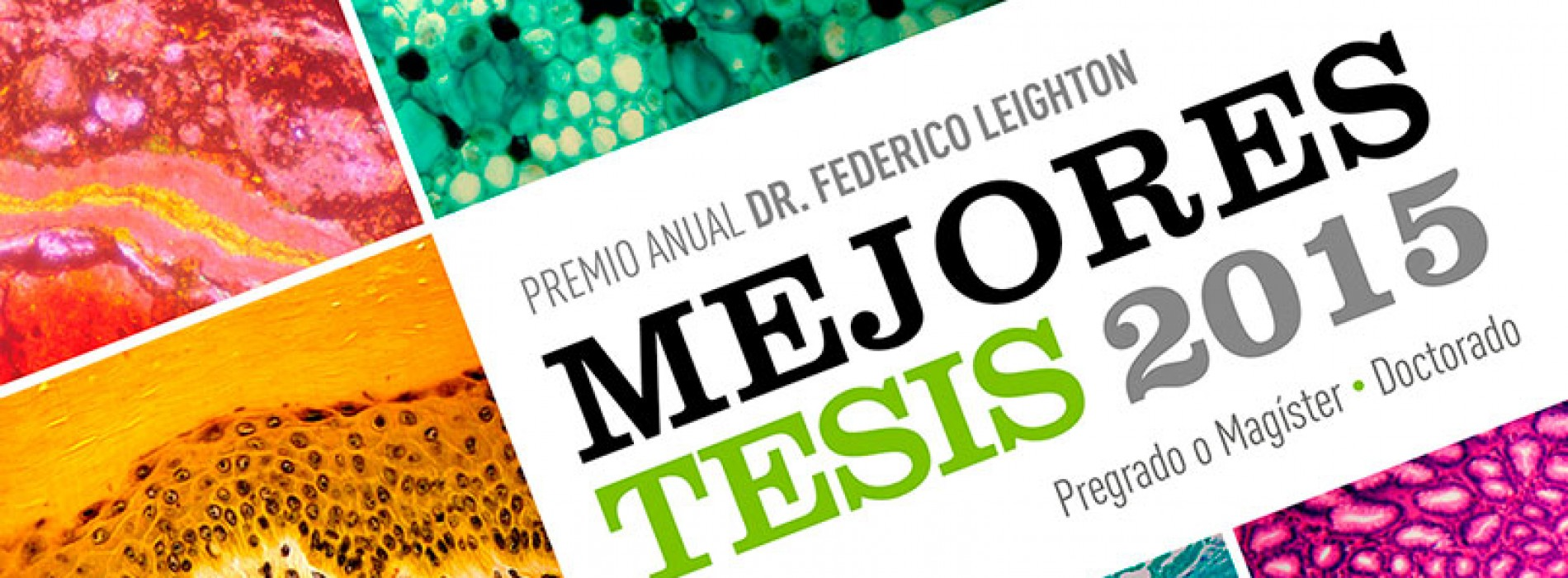 Mejores tesis 2015 Premio Anual Dr. Federico Leighton