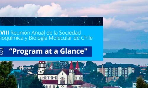 """""""Program at a Glance». XXXVIII Reunión Anual de la Sociedad de Bioquímica y BiologíaMolecular de Chile"""