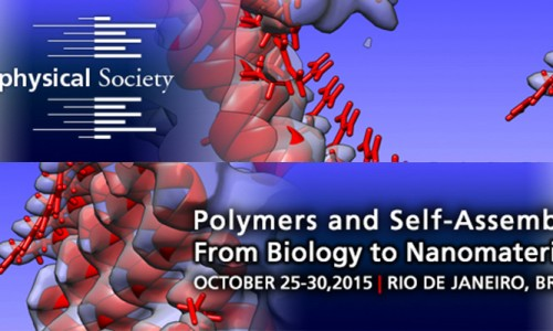 June 22 Abstract Deadline – Polymers and Self-Assembly: From Biology to Nanomaterials Meeting, Rio de Janeiro, Brazil