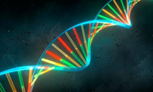 Curso Genética Molecular de Levaduras