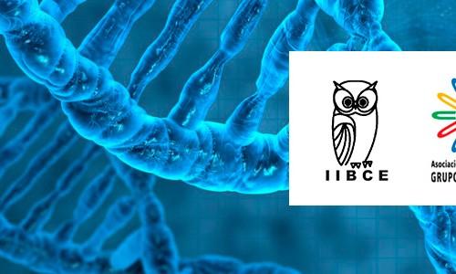 Becas para estudiantes de Maestría y Doctorado para el curso Advanced School on Molecular and Cell Biology to Unravel the Physiology of Diverse Biological Paradigms – Convenio IIBCE AUGM