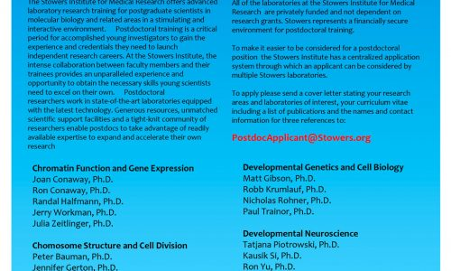 Postdoctoral Opportunities at the Stowers Institute