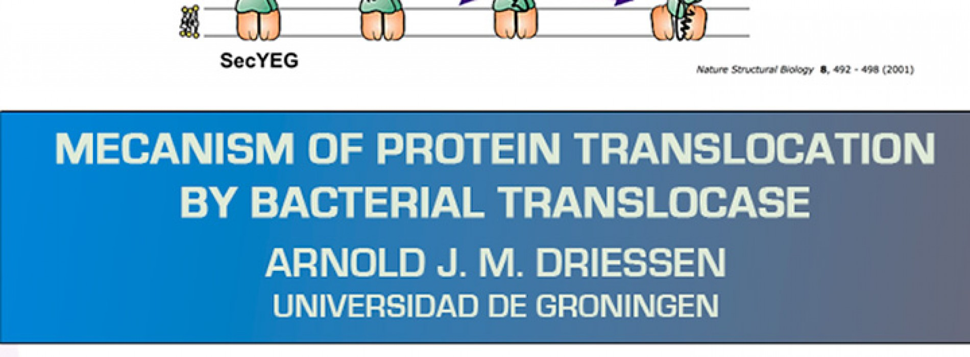 "Charla: ""Mecanism of Protein Translocation by Bacterial Translocase"" – Arnold J. M. Driessen"