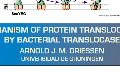 """Charla: """"Mechanism of Protein Translocation by Bacterial Translocase"""" – Arnold J. M. Driessen"""