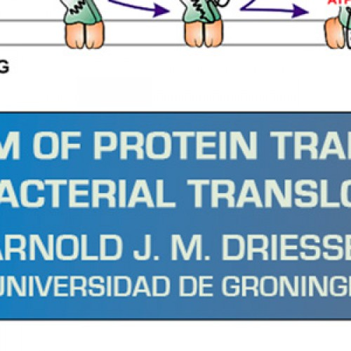 "Charla: ""Mechanism of Protein Translocation by Bacterial Translocase"" – Arnold J. M. Driessen"