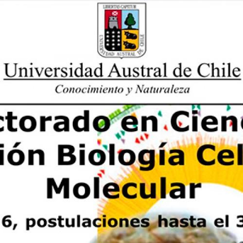Doctorado en Ciencias mención Biología Celular y Molecular