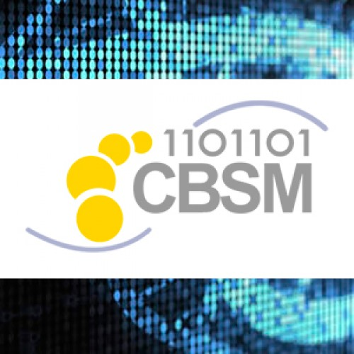 """Third and last call for participation in the """"ICBSM (FIRST INTERNATIONAL CONFERENCE IN BIOINFORMATICS, SIMULATIONS AND MODELING)"""""""
