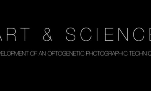 Art & Science: Optogenetic Photography (Spanish subtitles)