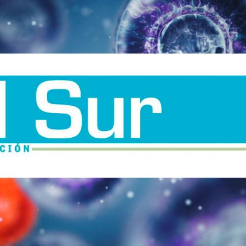 Investigador – Diario El Sur, Concepción
