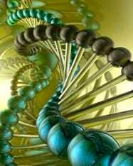 img-biologia-molecular-y-Biotecnologia