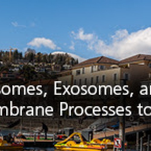 March 7 Abstract Deadline: Liposomes, Exosomes, and Virosomes Meeting, Switzerland