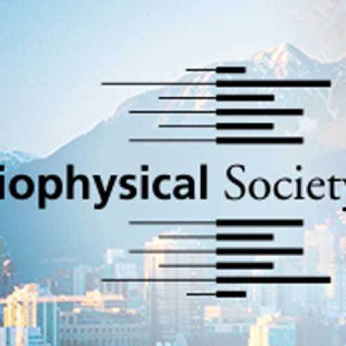 Abstract and Registration Deadlines Approaching-Engineering Approaches to Biomolecular Motors, Vancouver, Canada