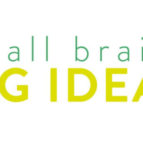 Cuarta edición del curso Small Brains Big Ideas