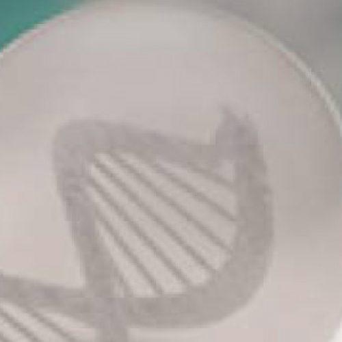 """II Curso Taller """"Visión Global de los Medicamentos Biotecnológicos"""""""