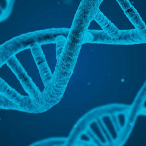 Doctorado en Genómica Integrativa (Santiago)