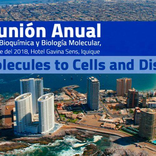 XLI Reunión Anual de la Sociedad de Bioquímica y Biología Molecular, 25 al 28 de Septiembre del 2018, Hotel Gavina Sens, Iquique