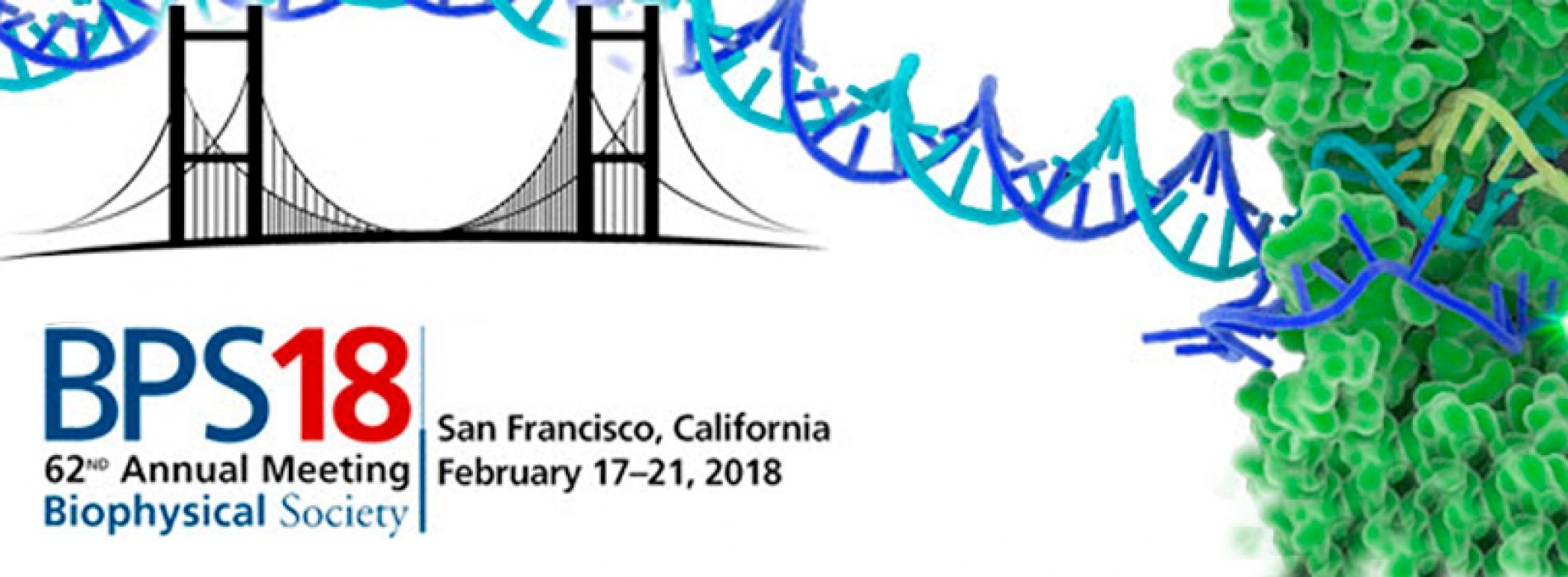 LAST CHANCE: January 15 is the BPS Late Abstract Submission/Early Registration Deadline