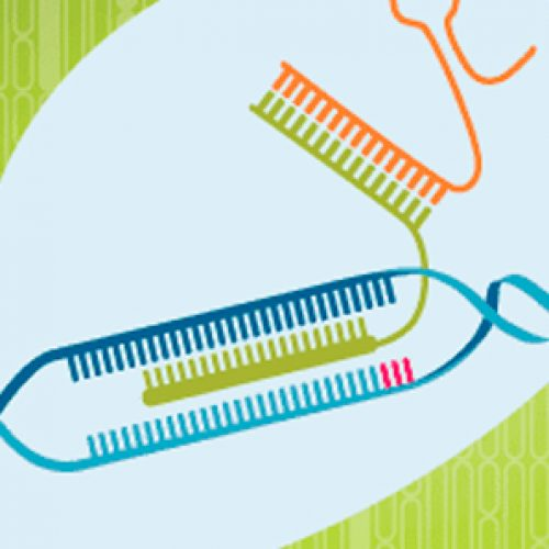 Join our webinar – Optimized methods to use Cas9 nickases in genome editing