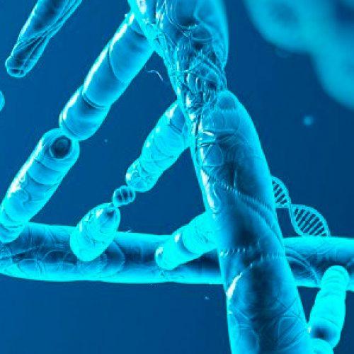 Estudio afirma que humanos ya alcanzamos el límite biológico