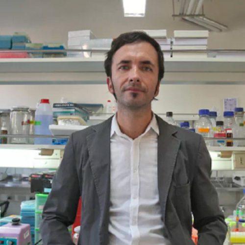 Fármaco contra el Parkinson tuvo espectaculares resultados en las pruebas con animales