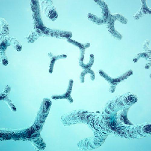 """Workshop """"Biología Celular y Molecular del ARN"""""""