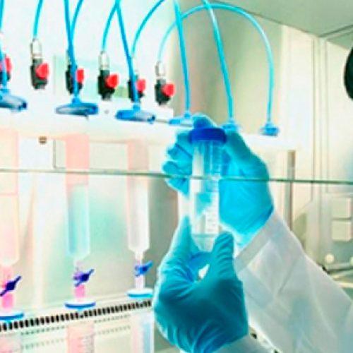 Sin ciencia en la escuela, ¿cómo sabremos de nuestros derechos genéticos?: hoy todo es ciencia