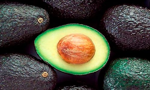 11 datos claves para conocer mejor la palta y su relevancia en Chile